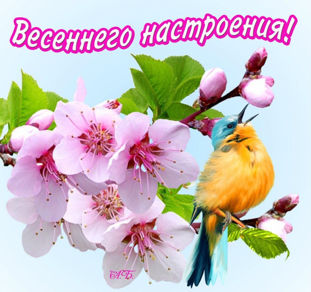 Поздравление для мужчин с весной
